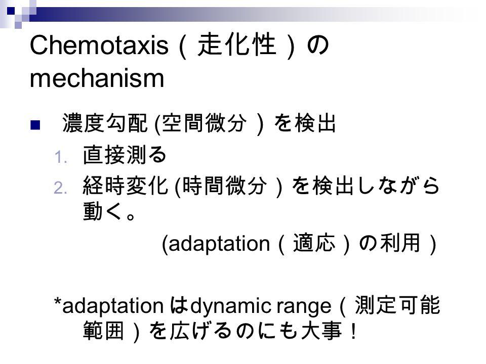 Chemotaxis (走化性)の mechanism 濃度勾配 ( 空間微分 ) を検出 1. 直接測る 2. 経時変化 ( 時間微分)を検出しながら 動く。 (adaptation (適応)の利用) *adaptation は dynamic range (測定可能 範囲)を広げるのにも大事!