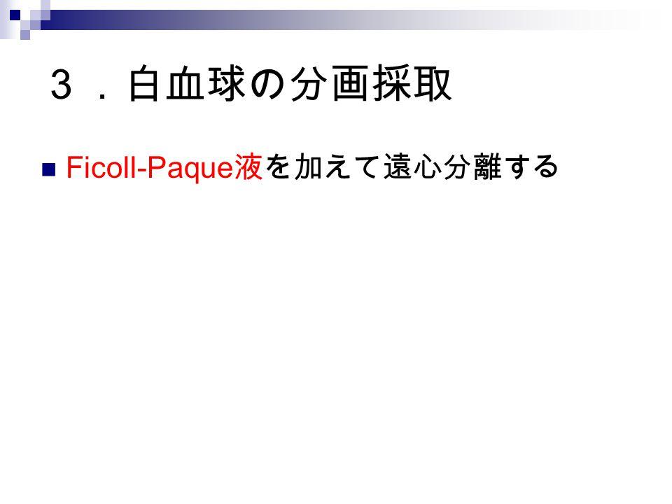 3.白血球の分画採取 Ficoll-Paque 液を加えて遠心分離する
