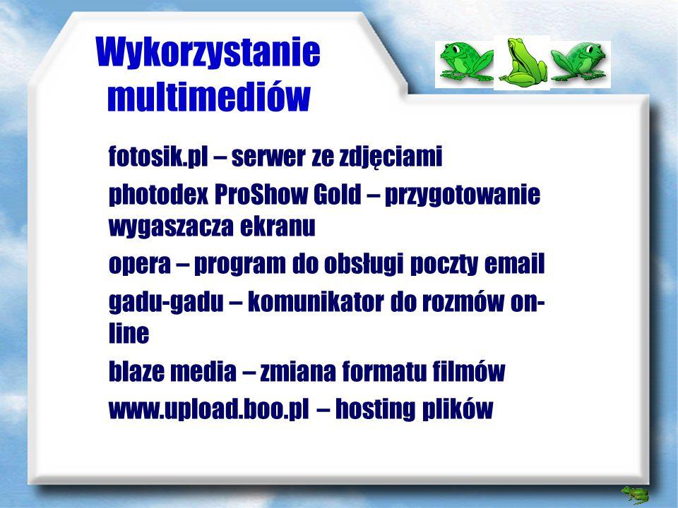 Wykorzystanie multimediów Word - podstawowe narzędzie do przygotowania tekstów, sprawozdań wyszukiwarka internetowa - tworzenie przewodników, wyszukiw