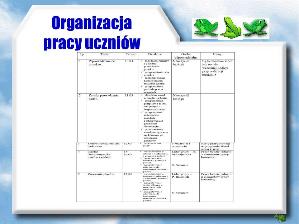 Wykorzystanie multimediów fotosik.pl – serwer ze zdjęciami photodex ProShow Gold – przygotowanie wygaszacza ekranu opera – program do obsługi poczty e