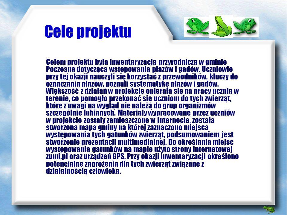 Cele projektu Celem projektu była inwentaryzacja przyrodnicza w gminie Poczesna dotycząca wstępowania płazów i gadów.