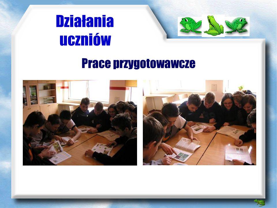 Strona internetowa http://plazyigady.eu.interia.pl