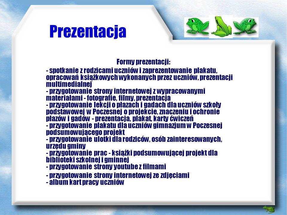 Wyniki prac Strona internetowa - podsumowanie http://plazyigady.eu.interia.pl/wyniki.html