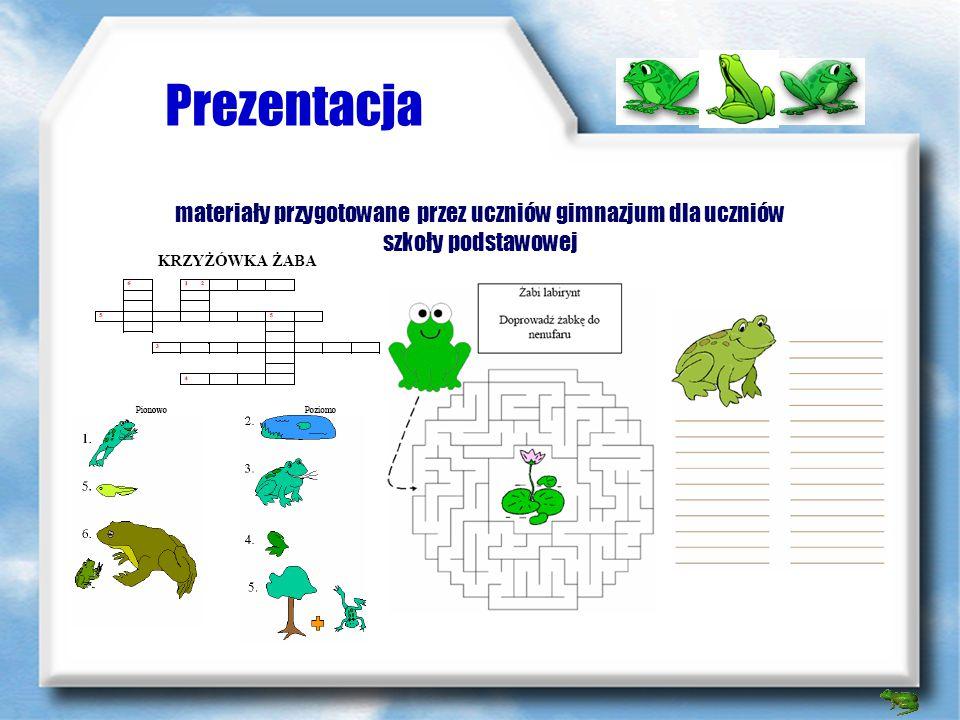 Prezentacja lekcja prowadzona przez uczniów gimnazjum dla uczniów szkoły podstawowej