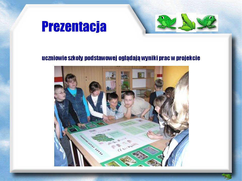 Prezentacja materiały przygotowane przez uczniów gimnazjum dla uczniów szkoły podstawowej