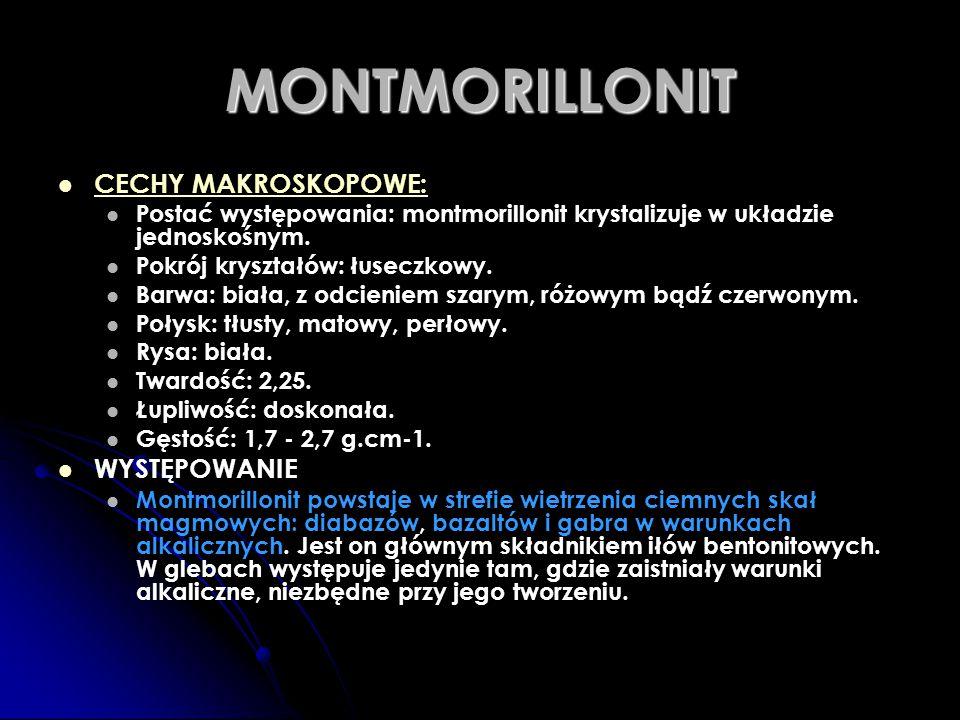 MONTMORILLONIT CECHY MAKROSKOPOWE: Postać występowania: montmorillonit krystalizuje w układzie jednoskośnym. Pokrój kryształów: łuseczkowy. Barwa: bia
