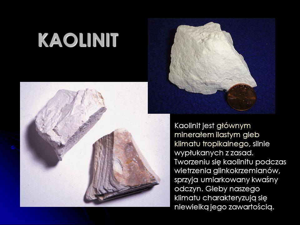 KAOLINIT Kaolinit jest głównym minerałem ilastym gleb klimatu tropikalnego, silnie wypłukanych z zasad. Tworzeniu się kaolinitu podczas wietrzenia gli