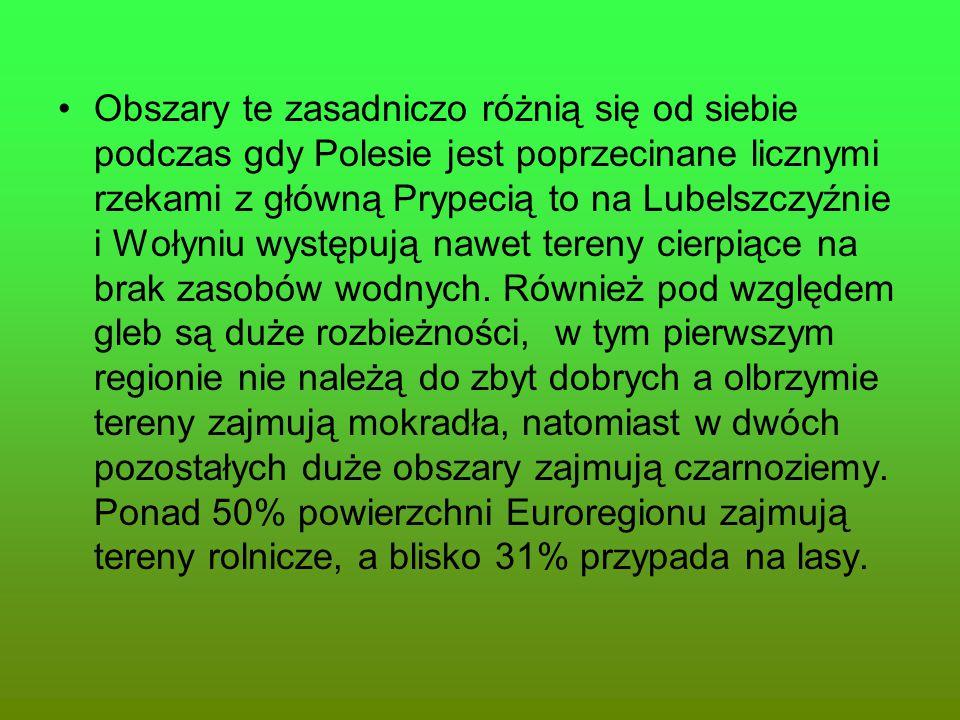 Obszary te zasadniczo różnią się od siebie podczas gdy Polesie jest poprzecinane licznymi rzekami z główną Prypecią to na Lubelszczyźnie i Wołyniu wys