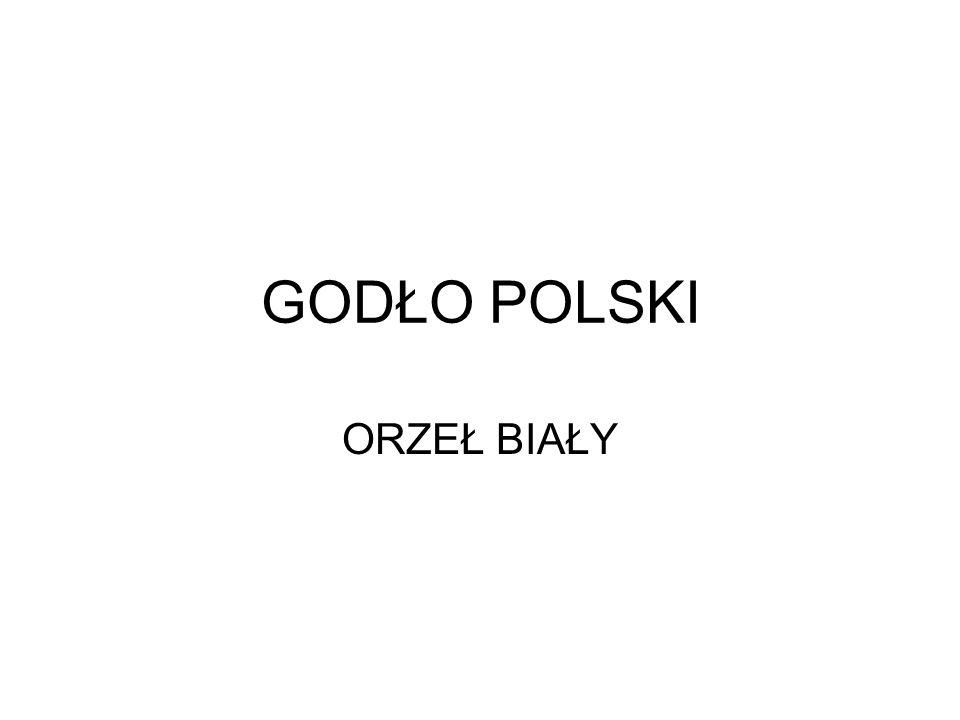 Orzeł z Dziennika Praw - 1918- 1919
