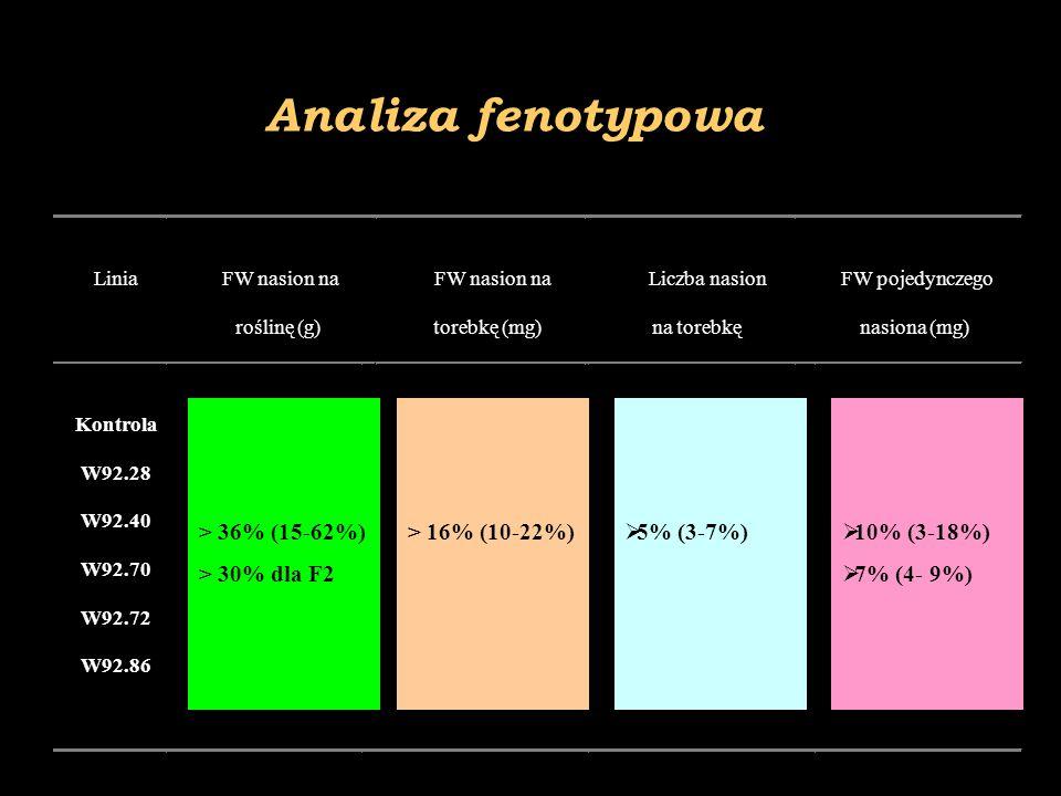 Analiza fenotypowa > 36% (15-62%) > 30% dla F2 > 16% (10-22%)  5% (3-7%)  10% (3-18%)  7% (4- 9%)