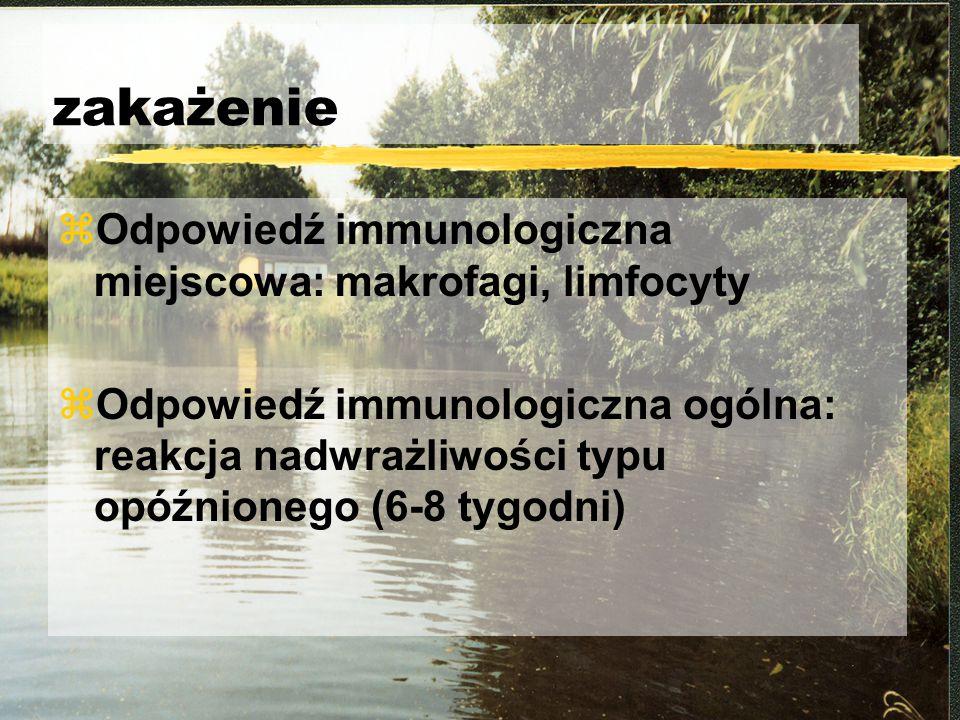 zakażenie zOdpowiedź immunologiczna miejscowa: makrofagi, limfocyty zOdpowiedź immunologiczna ogólna: reakcja nadwrażliwości typu opóźnionego (6-8 tyg