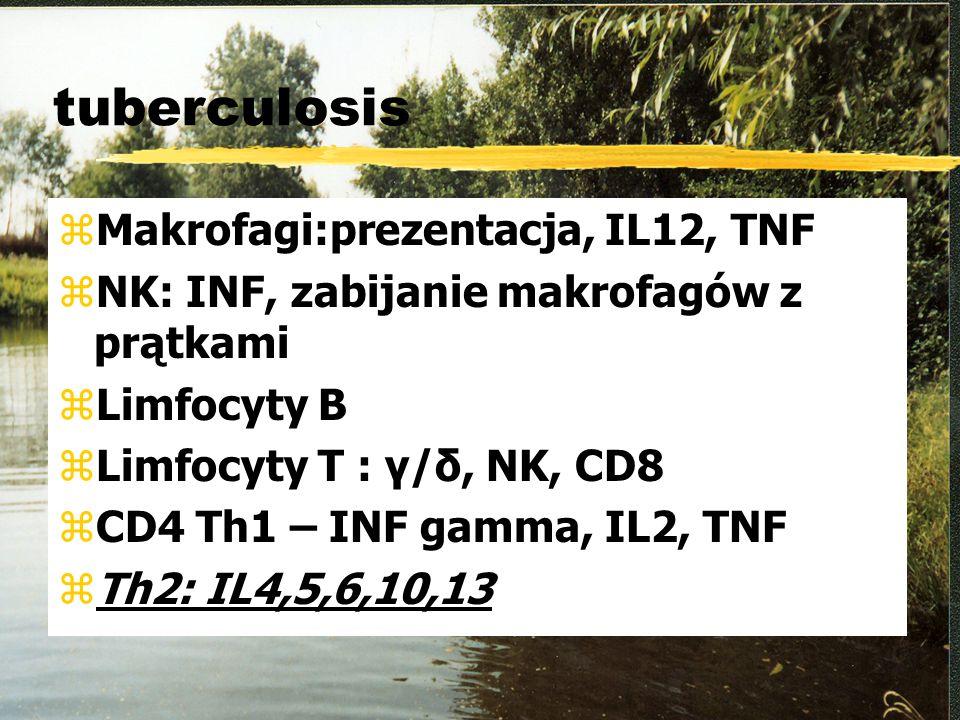 tuberculosis zMakrofagi:prezentacja, IL12, TNF zNK: INF, zabijanie makrofagów z prątkami zLimfocyty B zLimfocyty T : γ/δ, NK, CD8 zCD4 Th1 – INF gamma