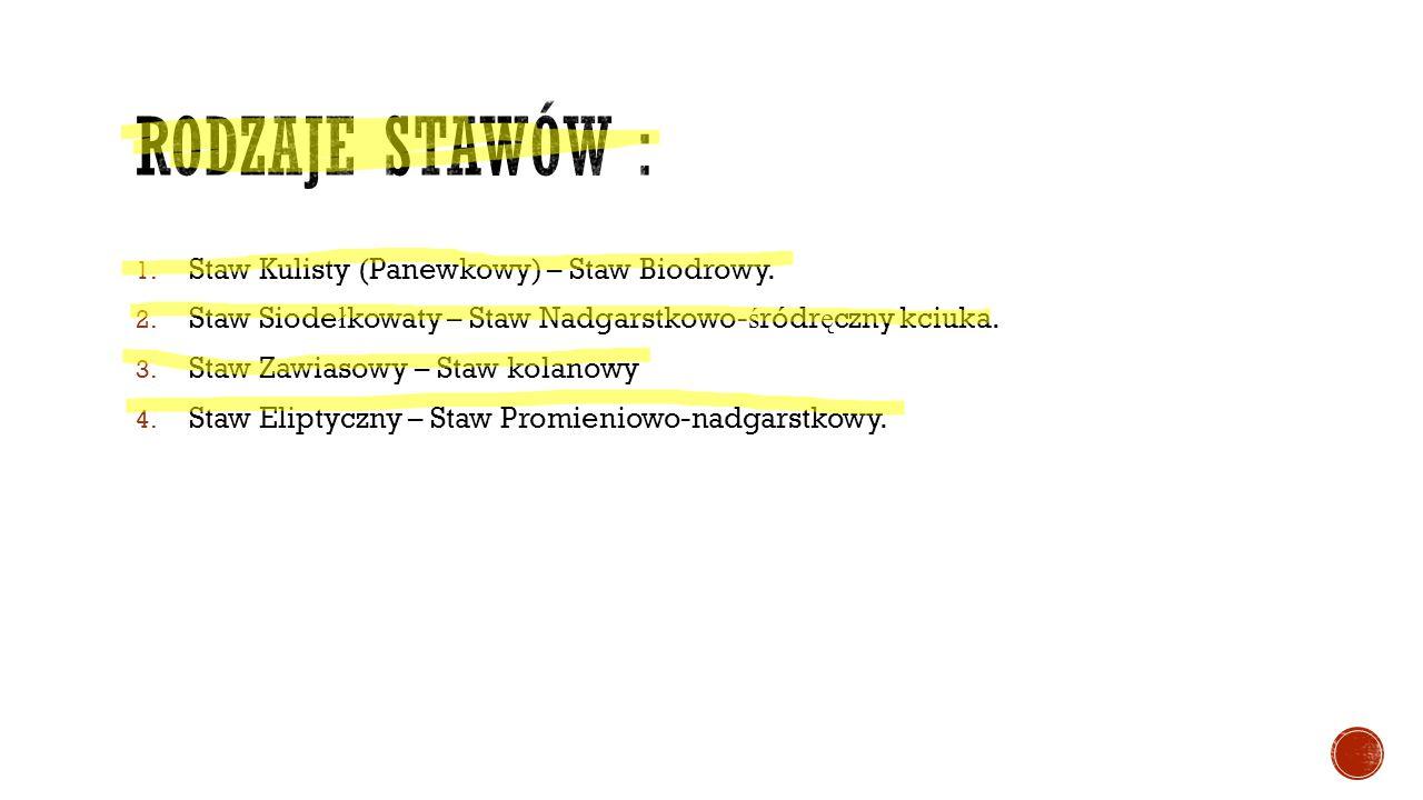 1. Staw Kulisty (Panewkowy) – Staw Biodrowy. 2. Staw Siode ł kowaty – Staw Nadgarstkowo- ś ródr ę czny kciuka. 3. Staw Zawiasowy – Staw kolanowy 4. St