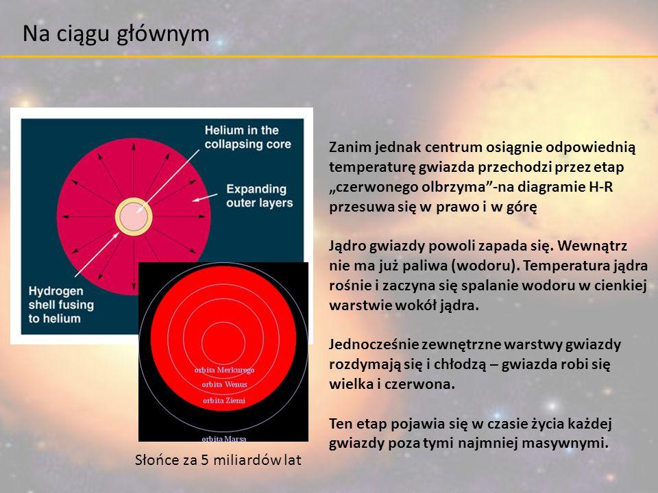 """Słońce za 5 miliardów lat Zanim jednak centrum osiągnie odpowiednią temperaturę gwiazda przechodzi przez etap """"czerwonego olbrzyma""""-na diagramie H-R p"""