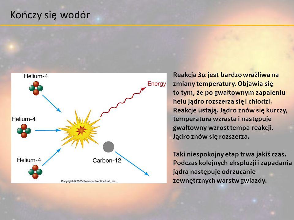 Reakcja 3α jest bardzo wrażliwa na zmiany temperatury. Objawia się to tym, że po gwałtownym zapaleniu helu jądro rozszerza się i chłodzi. Reakcje usta