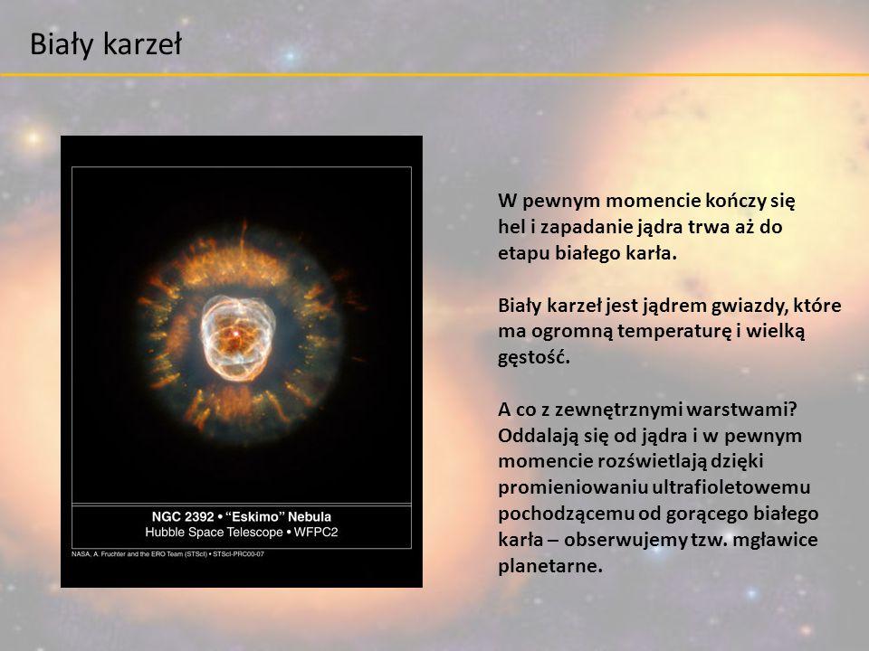 W pewnym momencie kończy się hel i zapadanie jądra trwa aż do etapu białego karła. Biały karzeł jest jądrem gwiazdy, które ma ogromną temperaturę i wi