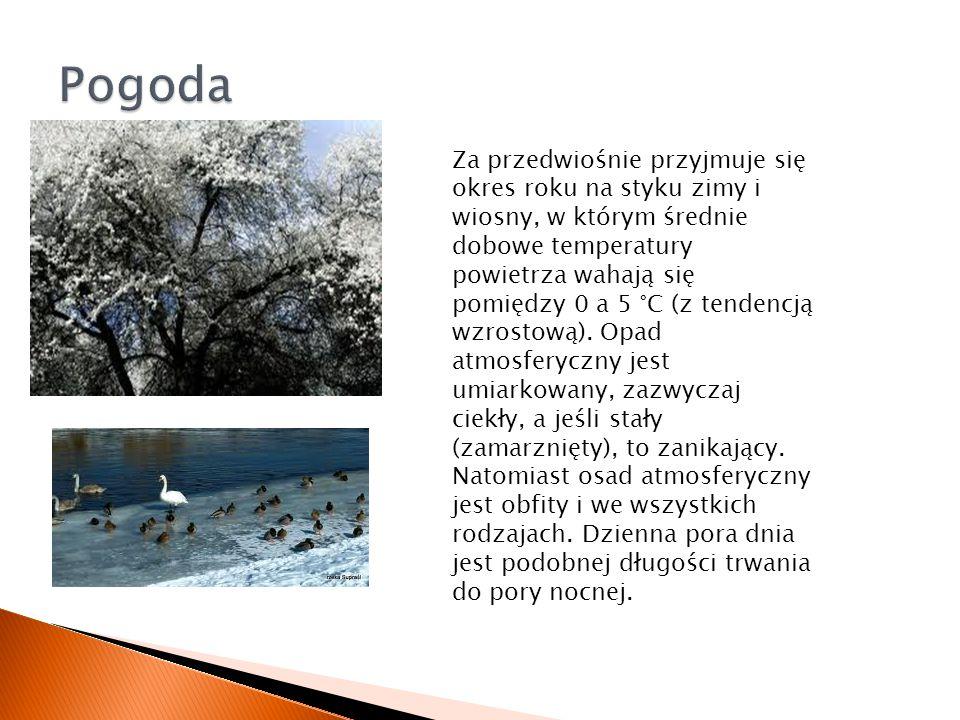 Za przedwiośnie przyjmuje się okres roku na styku zimy i wiosny, w którym średnie dobowe temperatury powietrza wahają się pomiędzy 0 a 5 °C (z tendenc