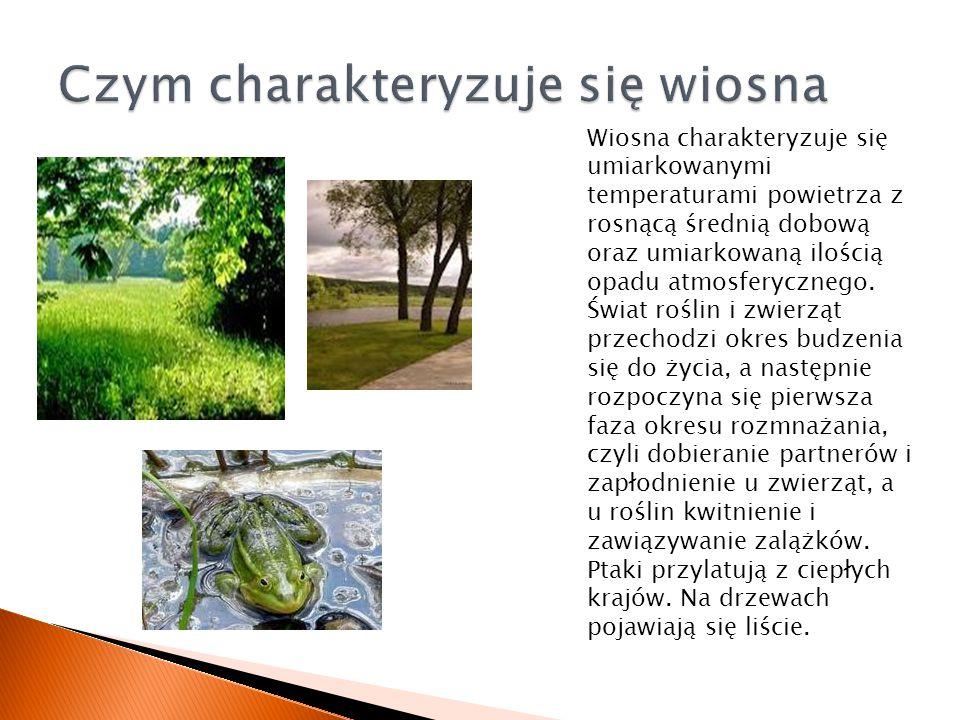 Wiosna charakteryzuje się umiarkowanymi temperaturami powietrza z rosnącą średnią dobową oraz umiarkowaną ilością opadu atmosferycznego. Świat roślin