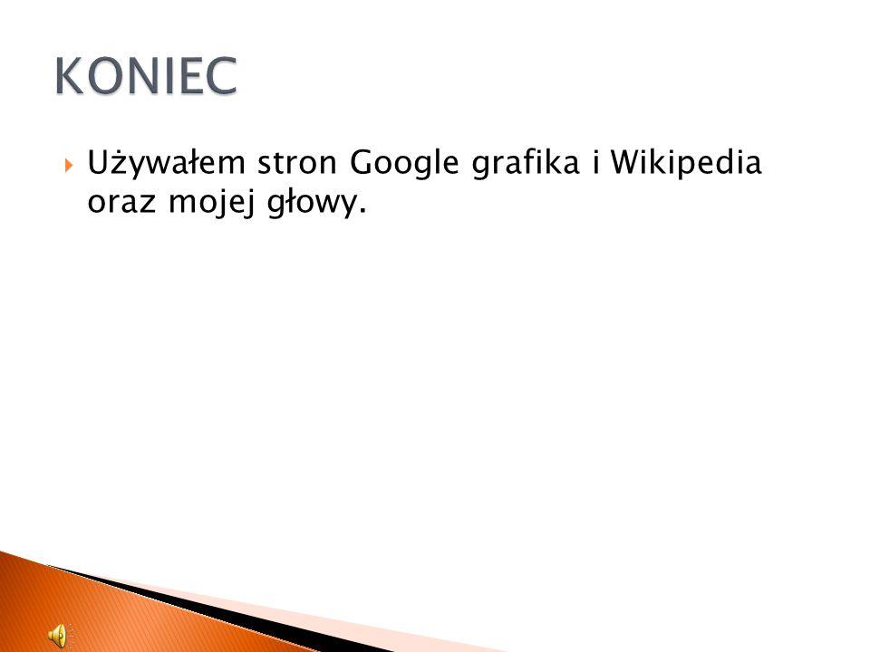  Używałem stron Google grafika i Wikipedia oraz mojej głowy.