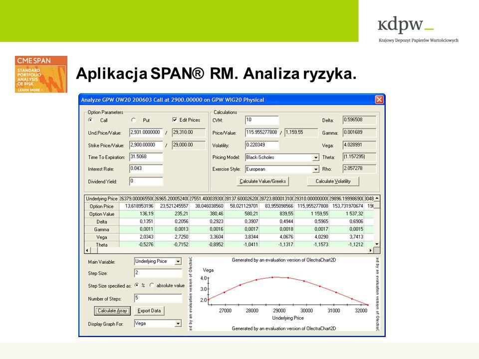 Aplikacja SPAN® RM. Analiza ryzyka.