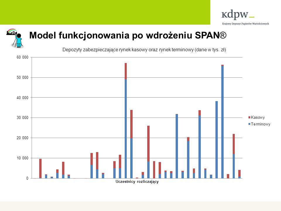 Model funkcjonowania po wdrożeniu SPAN®