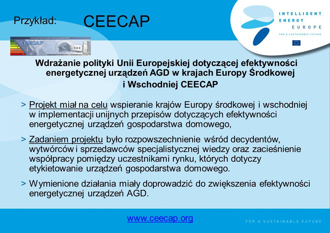 Wdrażanie polityki Unii Europejskiej dotyczącej efektywności energetycznej urządzeń AGD w krajach Europy Środkowej i Wschodniej CEECAP >Projekt miał na celu wspieranie krajów Europy środkowej i wschodniej w implementacji unijnych przepisów dotyczących efektywności energetycznej urządzeń gospodarstwa domowego, >Zadaniem projektu było rozpowszechnienie wśród decydentów, wytwórców i sprzedawców specjalistycznej wiedzy oraz zacieśnienie współpracy pomiędzy uczestnikami rynku, których dotyczy etykietowanie urządzeń gospodarstwa domowego.