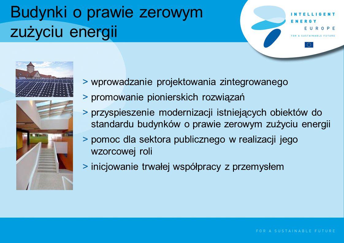 Budynki o prawie zerowym zużyciu energii >wprowadzanie projektowania zintegrowanego >promowanie pionierskich rozwiązań >przyspieszenie modernizacji istniejących obiektów do standardu budynków o prawie zerowym zużyciu energii >pomoc dla sektora publicznego w realizacji jego wzorcowej roli >inicjowanie trwałej współpracy z przemysłem
