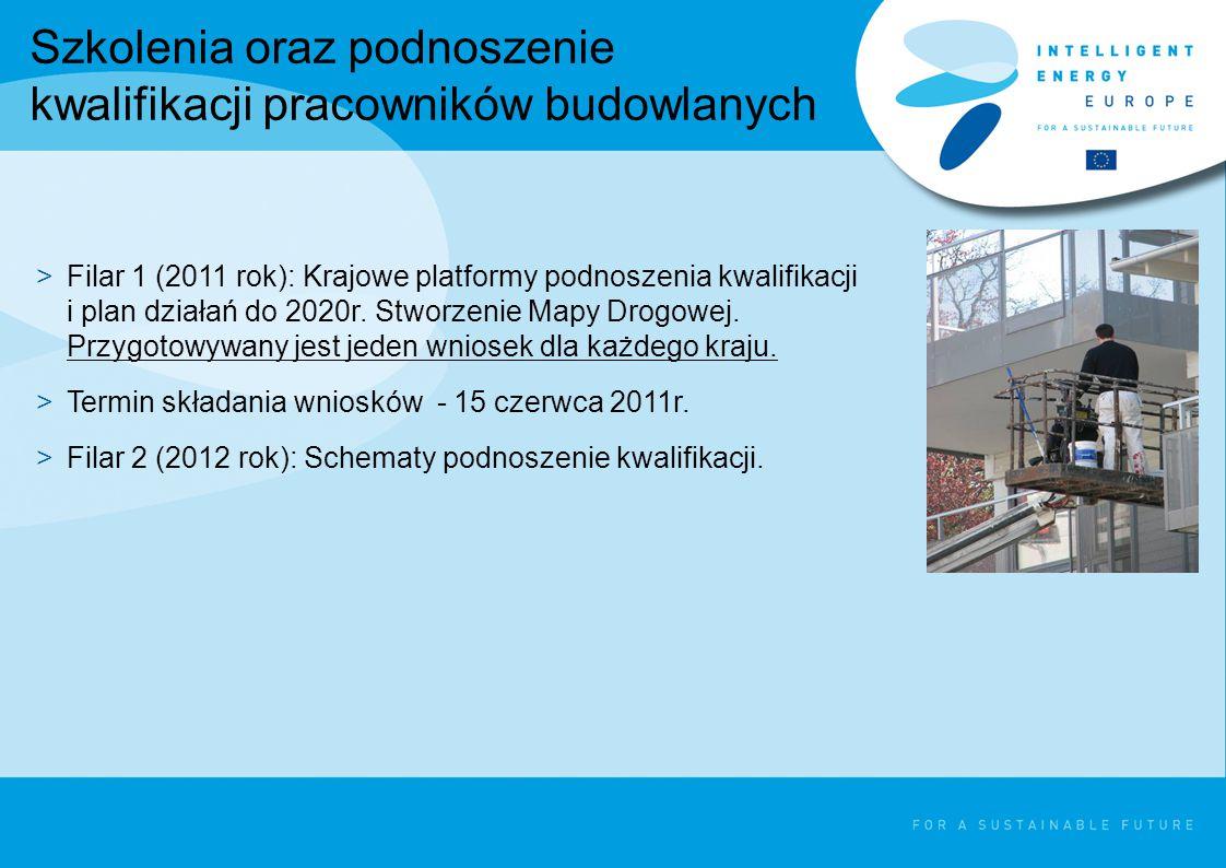 Szkolenia oraz podnoszenie kwalifikacji pracowników budowlanych >Filar 1 (2011 rok): Krajowe platformy podnoszenia kwalifikacji i plan działań do 2020r.