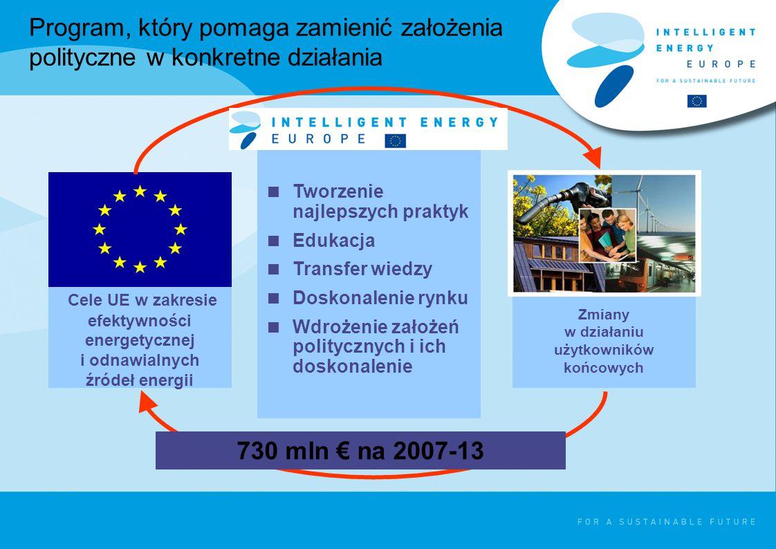 Program, który pomaga zamienić założenia polityczne w konkretne działania Zmiany w działaniu użytkowników końcowych Cele UE w zakresie efektywności energetycznej i odnawialnych źródeł energii  Tworzenie najlepszych praktyk  Edukacja  Transfer wiedzy  Doskonalenie rynku  Wdrożenie założeń politycznych i ich doskonalenie 730 mln € na 2007-13