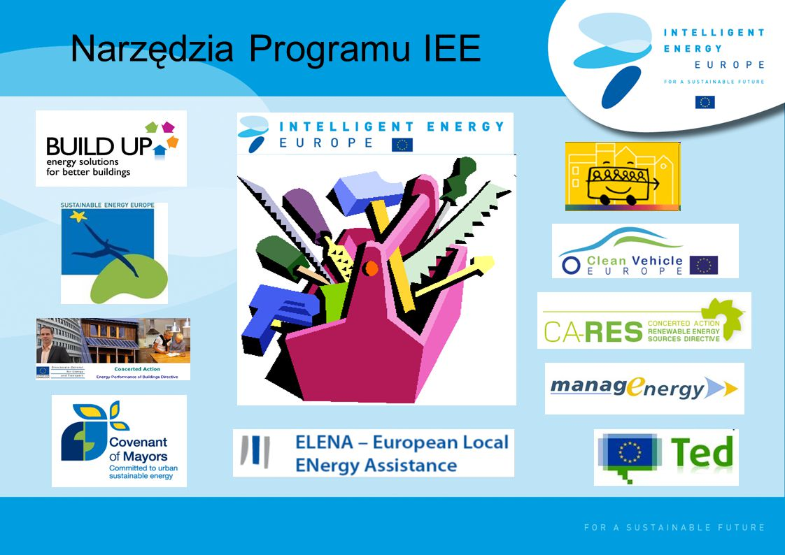 Program IEE w liczbach Odnawialne źródła energii Efektywność energetyczna Dotychczas w ramach Programu IEE: - dofinansowano > 500 projektów - utworzono > 60 lokalnych lub regionalnych agencji energetycznych Z pomocy skorzystało ponad 3000 beneficjentów z 30 krajów Działania zintegrowane Efektywność energetyczna w transporcie