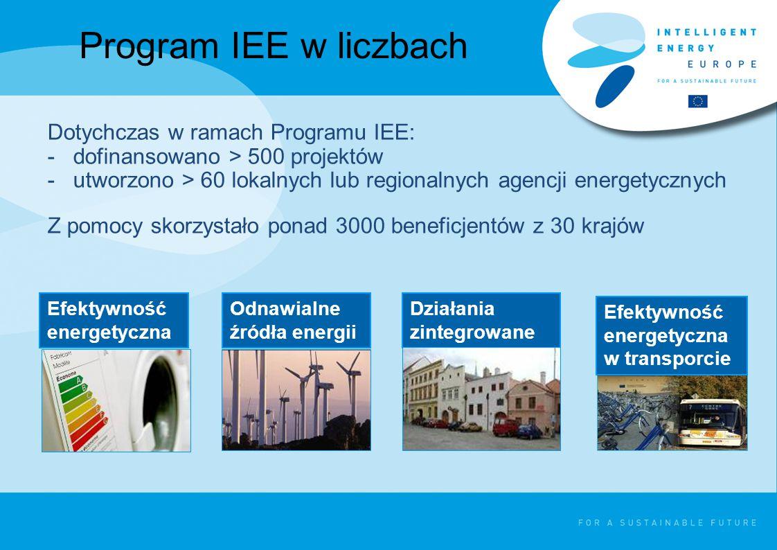 Program IEE - instrumenty >konkursy na najlepsze projekty (zaproszenie do składania wniosków), >przetargi na projekty zamówione przez Komisję Europejską, >Inicjatywy ELENA.