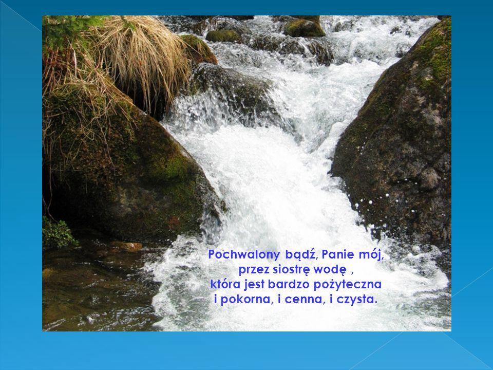 Pochwalony bądź, Panie mój, przez siostrę wodę, która jest bardzo pożyteczna i pokorna, i cenna, i czysta.