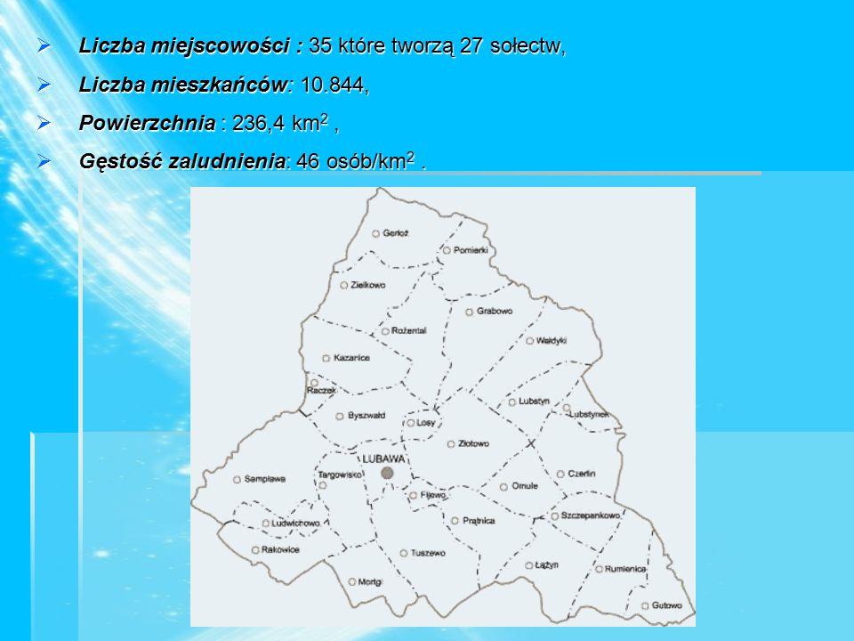  Liczba miejscowości : 35 które tworzą 27 sołectw,  Liczba mieszkańców: 10.844,  Powierzchnia : 236,4 km 2,  Gęstość zaludnienia: 46 osób/km 2.