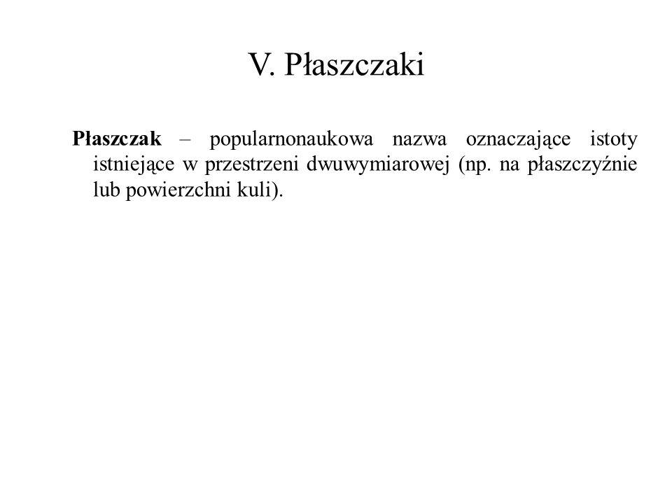 Płaszczak – popularnonaukowa nazwa oznaczające istoty istniejące w przestrzeni dwuwymiarowej (np.