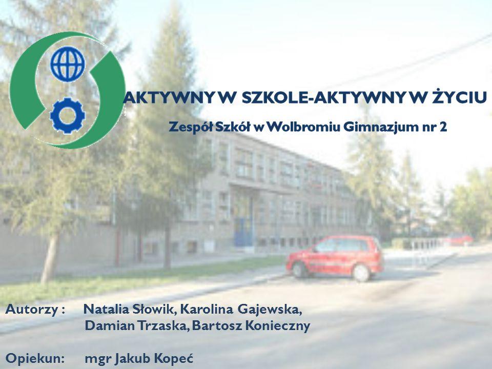 Autorzy : Natalia Słowik, Karolina Gajewska, Damian Trzaska, Bartosz Konieczny Opiekun: mgr Jakub Kopeć
