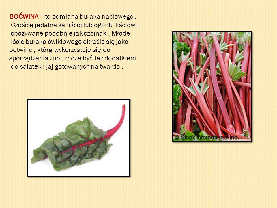 BOĆWINA – to odmiana buraka naciowego. Częścią jadalną są liście lub ogonki liściowe spożywane podobnie jak szpinak. Młode liście buraka ćwikłowego ok