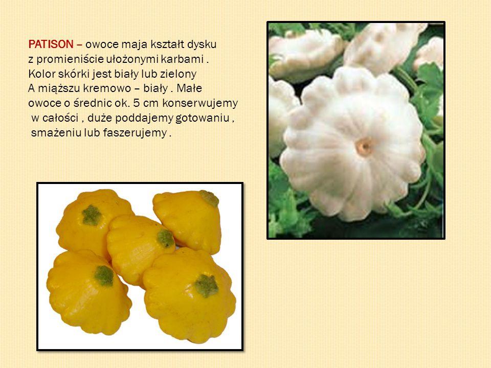 PATISON – owoce maja kształt dysku z promieniście ułożonymi karbami. Kolor skórki jest biały lub zielony A miąższu kremowo – biały. Małe owoce o średn