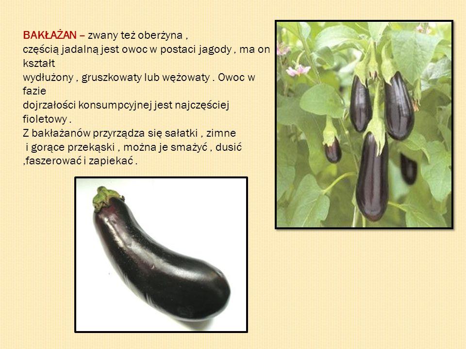 BAKŁAŻAN – zwany też oberżyna, częścią jadalną jest owoc w postaci jagody, ma on kształt wydłużony, gruszkowaty lub wężowaty. Owoc w fazie dojrzałości