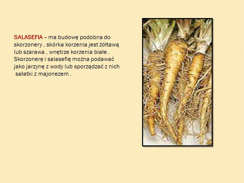 SALASEFIA – ma budowę podobna do skorzonery, skórka korzenia jest żółtawą lub szarawa, wnętrze korzenia białe. Skorzonerę i salasefię można podawać ja