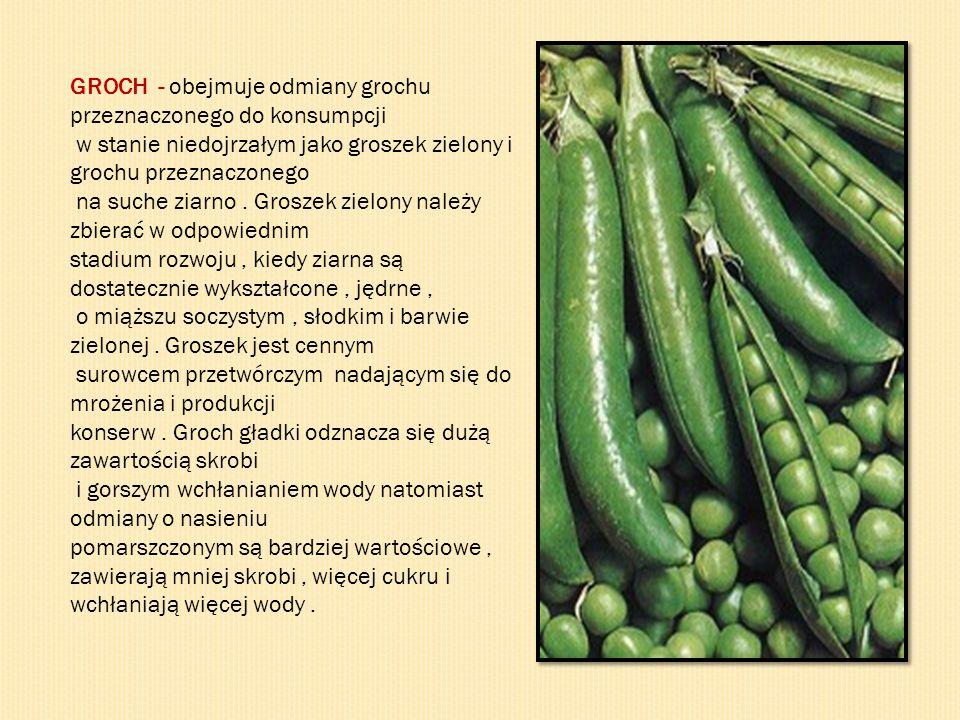GROCH - obejmuje odmiany grochu przeznaczonego do konsumpcji w stanie niedojrzałym jako groszek zielony i grochu przeznaczonego na suche ziarno. Grosz