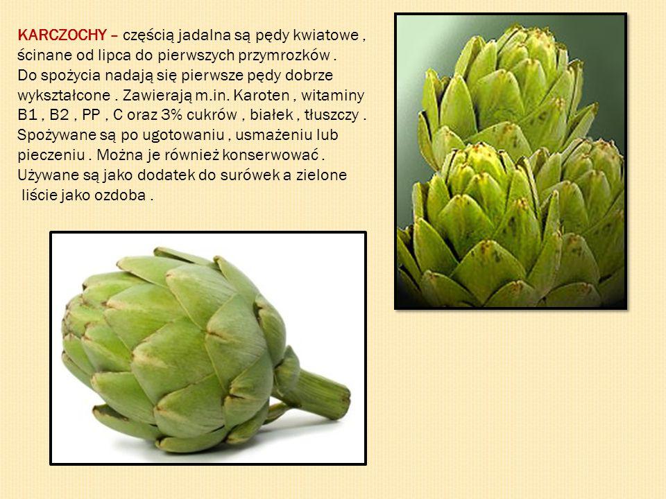 KARCZOCHY – częścią jadalna są pędy kwiatowe, ścinane od lipca do pierwszych przymrozków.