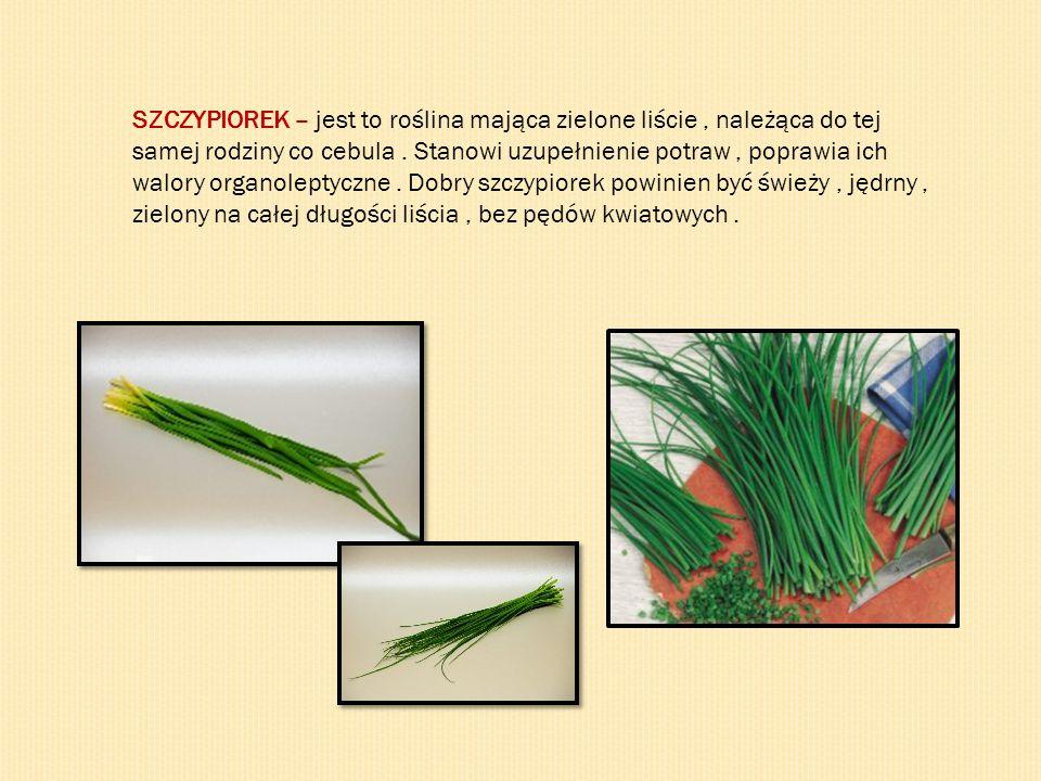 SZCZYPIOREK – jest to roślina mająca zielone liście, należąca do tej samej rodziny co cebula. Stanowi uzupełnienie potraw, poprawia ich walory organol