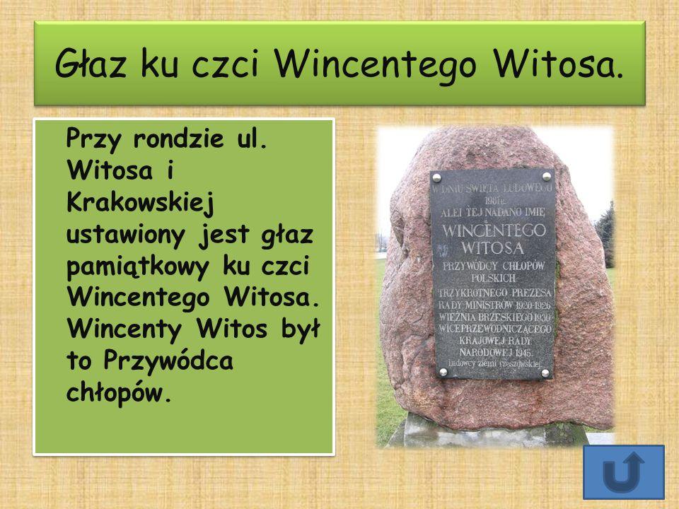 Głaz ku czci Wincentego Witosa.Głaz ku czci Wincentego Witosa.