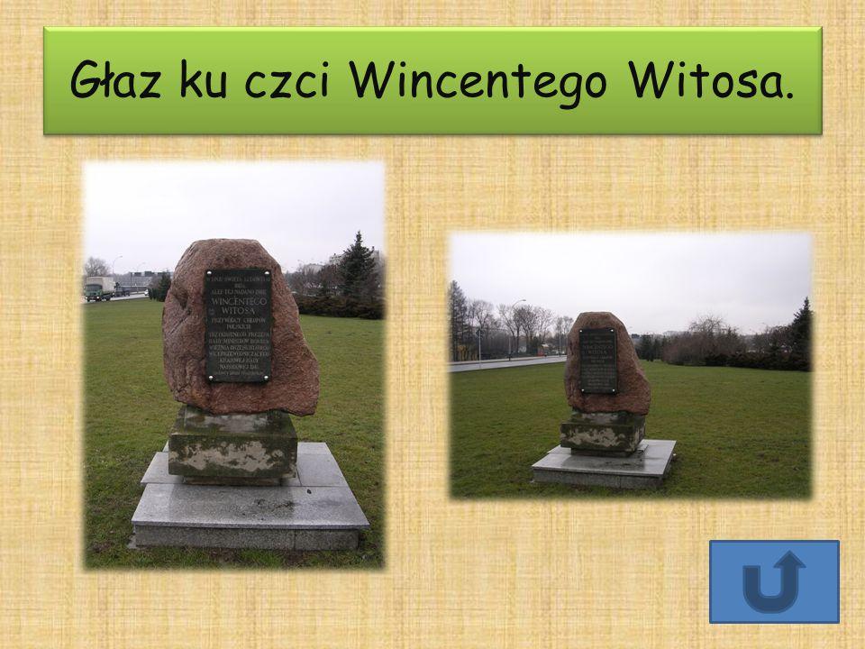 Głaz ku czci Wincentego Witosa.