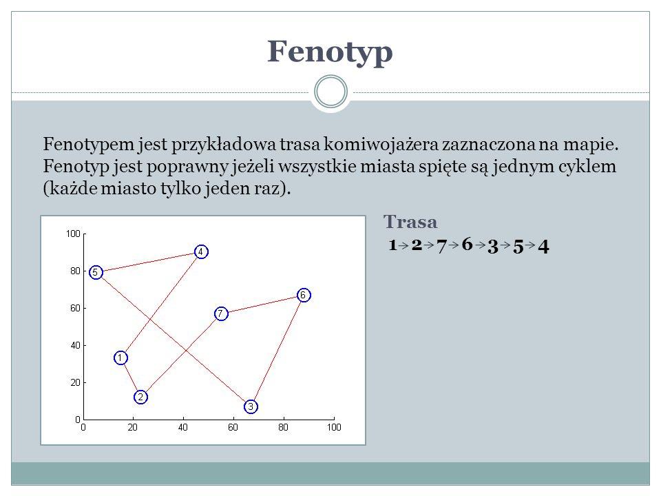 Fenotyp Fenotypem jest przykładowa trasa komiwojażera zaznaczona na mapie. Fenotyp jest poprawny jeżeli wszystkie miasta spięte są jednym cyklem (każd