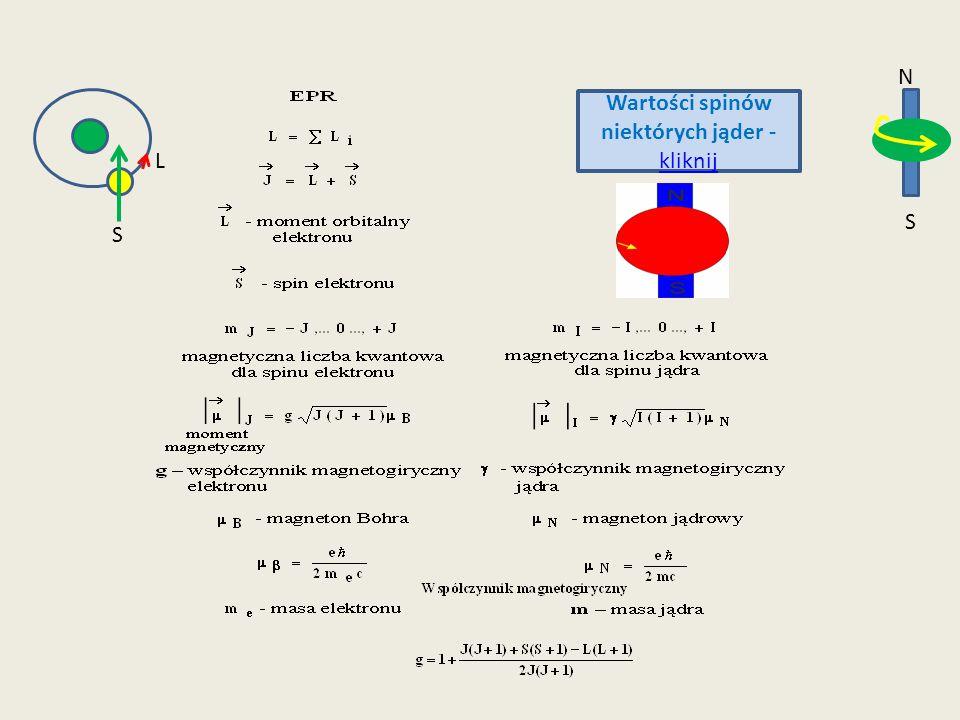 E Wartości spinów niektórych jąder - kliknij kliknij N S S L