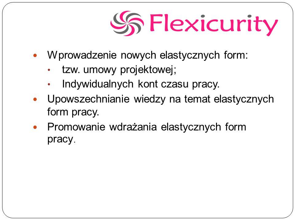 Wprowadzenie nowych elastycznych form: tzw.umowy projektowej; Indywidualnych kont czasu pracy.