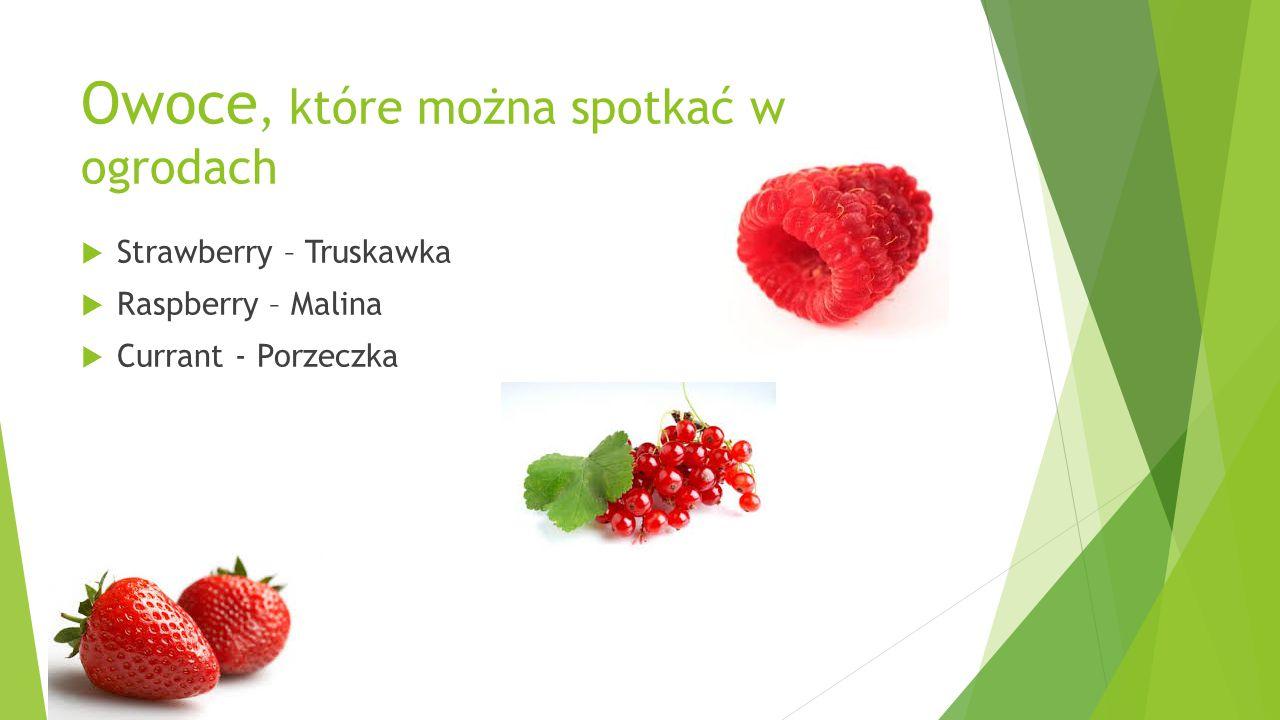 Owoce, które można spotkać w ogrodach  Strawberry – Truskawka  Raspberry – Malina  Currant - Porzeczka