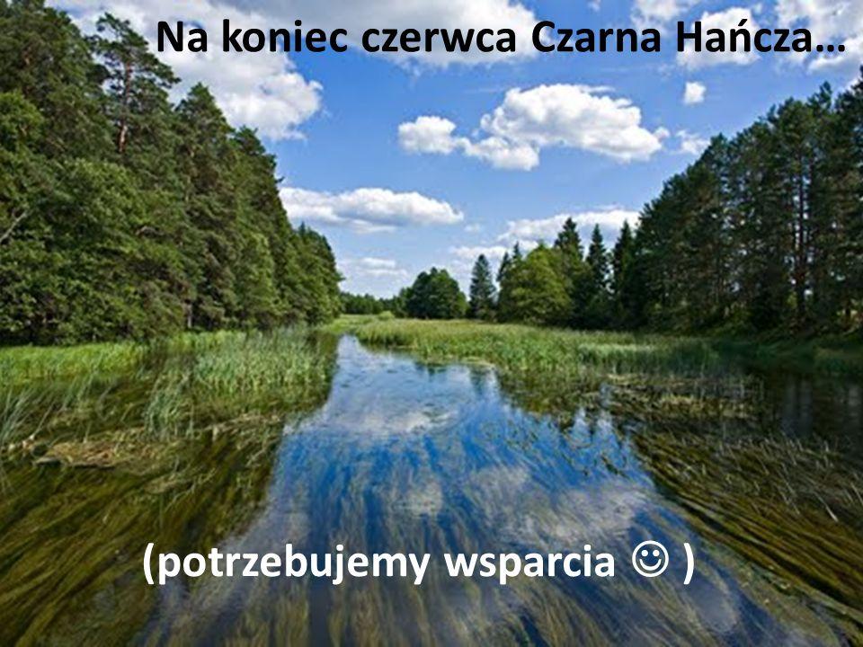 95 ROCZNICA URODZIN ŚW. JANA PAWŁA II 18.05.2015