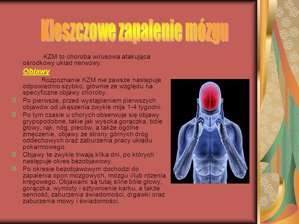 Najprostszym sposobem na rozpoznanie boreliozy jest zaobserwowanie rumienia po ukąszeniu. Niestety, większość chorych nie zauważa albo ukąszenia, albo